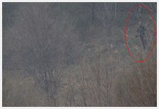 Sniper image